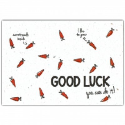 GOOD LUCK you can do it!